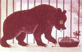 У мохнатого медведя.