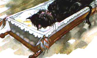 вместо старичка в нем спала черная кошка.
