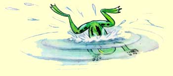 """Рисунок В.Сутеева к сказке М.Пляцковского """"Зеленый Лягушёнок и желтая кувшинка"""""""