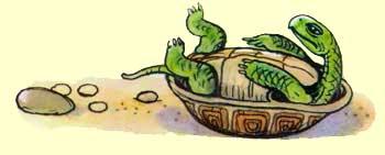 Сказка о перевернутой черепахе Пляцковский