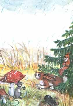 Начались холодные осенние дожди. Пушишка и Курре ищут укрытие под елочкой.