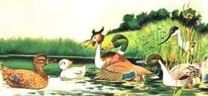 На озере, где утенок остановился, он спрашивал у всех